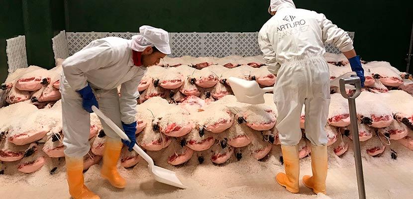Operarios en el proceso de salado del jamón ibérico